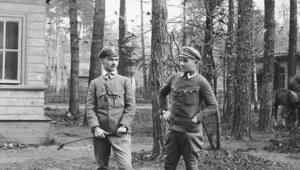 Polskie dywizje wojny 1920 roku
