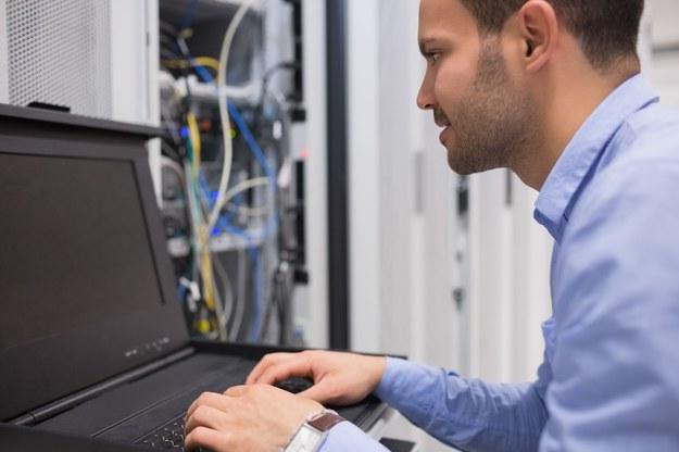 Polskie firmy coraz częściej interesują się specjalistami np. z dziedziny IT czy menedżerami średniego szczebla /123RF/PICSEL