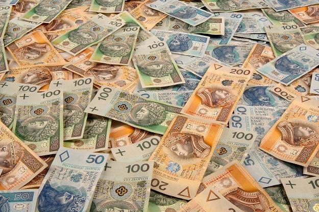 Polskie firmy jeszcze nigdy w historii nie miały tyle pieniędzy na kontach /© Bauer