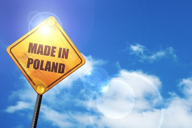 Polskie firmy ruszyły na podbój świata /©123RF/PICSEL