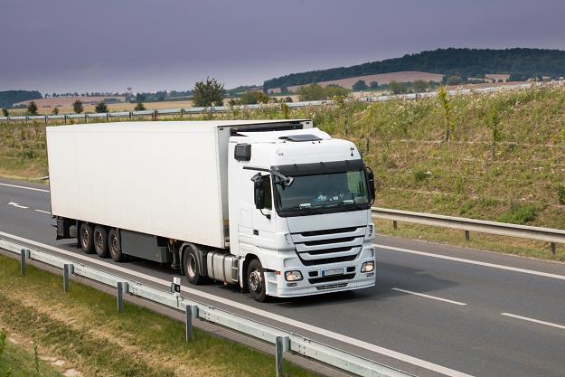 Polskie firmy transportowe są potęgą w UE /©123RF/PICSEL