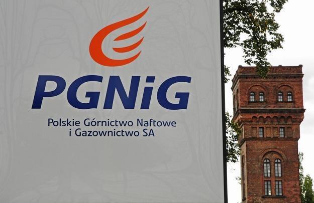 Polskie Górnictwo Naftowe i Gazownictwo jest zainteresowane kupnem SPEC. Fot. DARIUSZ STASZCZYSZYN /Reporter