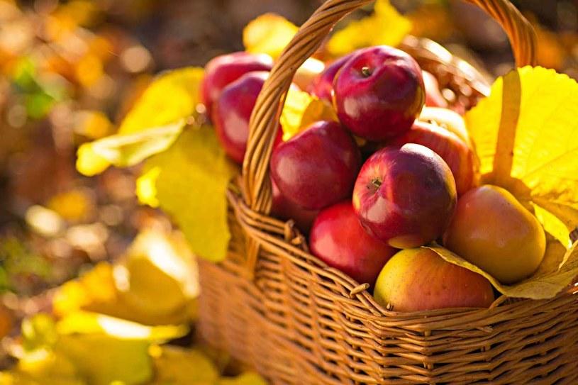 Polskie jabłka są najlepsze na świecie /123RF/PICSEL