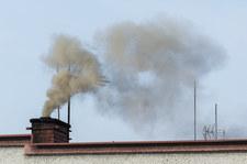Polskie miasto wspiera likwidację kopciuchów