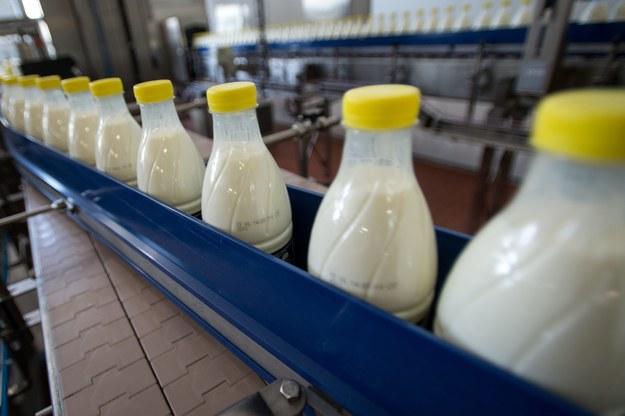 Polskie mleko płynie na Białoruś