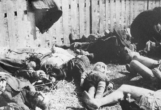 Polskie ofiary ukraińskiego ludobójstwa na Wołyniu /Marek Skorupski /Agencja FORUM