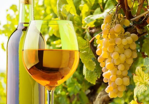 Polskie wina zdobywają rynek. /©123RF/PICSEL