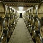 Polskie wino wnet trafi do sklepów