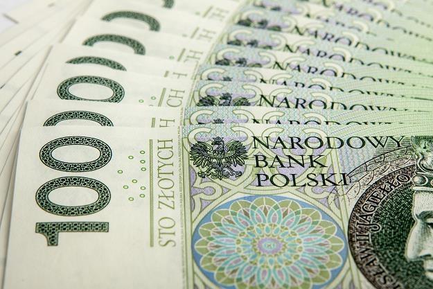 Polskim gminom brakuje samodzielności finansowej /©123RF/PICSEL