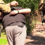 Polsko-egipski gang narkotykowy rozbity. Działali w Małopolsce