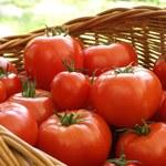 Pomidory w elementach wyposażenia fordów