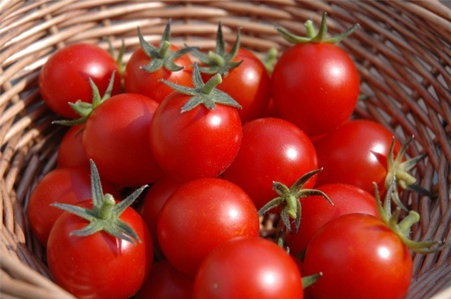 pomidory /© Photogenica