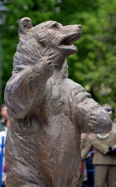 Pomnik niedźwiedzia Wojtka /PAP/Jacek Bednarczyk /PAP
