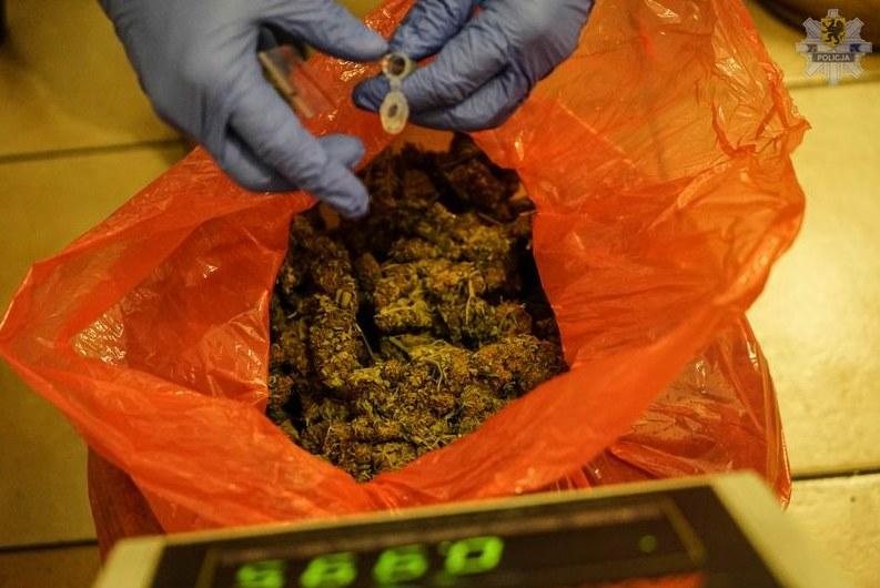 Pomorska policja znalazła ok. 260 kg narkotyków /Policja