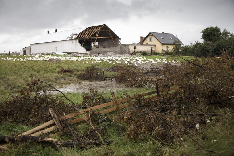 Pomorze po przejściu nawałnic /Maciej Łuczniewski /Reporter