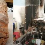 Pomyliły granat ze skamieliną. Dramat rozegrał się w kuchni