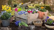 Pomysł na stroik świąteczny z kwiatkami i minibutelkami