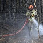 Ponad 1,5 tysiąca pożarów traw w jeden weekend