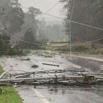 Ponad 20 ofiar śmiertelnych po przejściu tornada w Alabamie