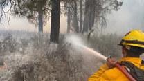 Ponad 2000 strażaków w akcji. Stany Zjednoczone i Kanada walczą z ogromnymi pożarami