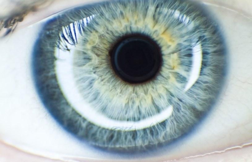 Ponad 300 mln osób na świecie jest niewidomych lub cierpi na problemy widzenia /123RF/PICSEL
