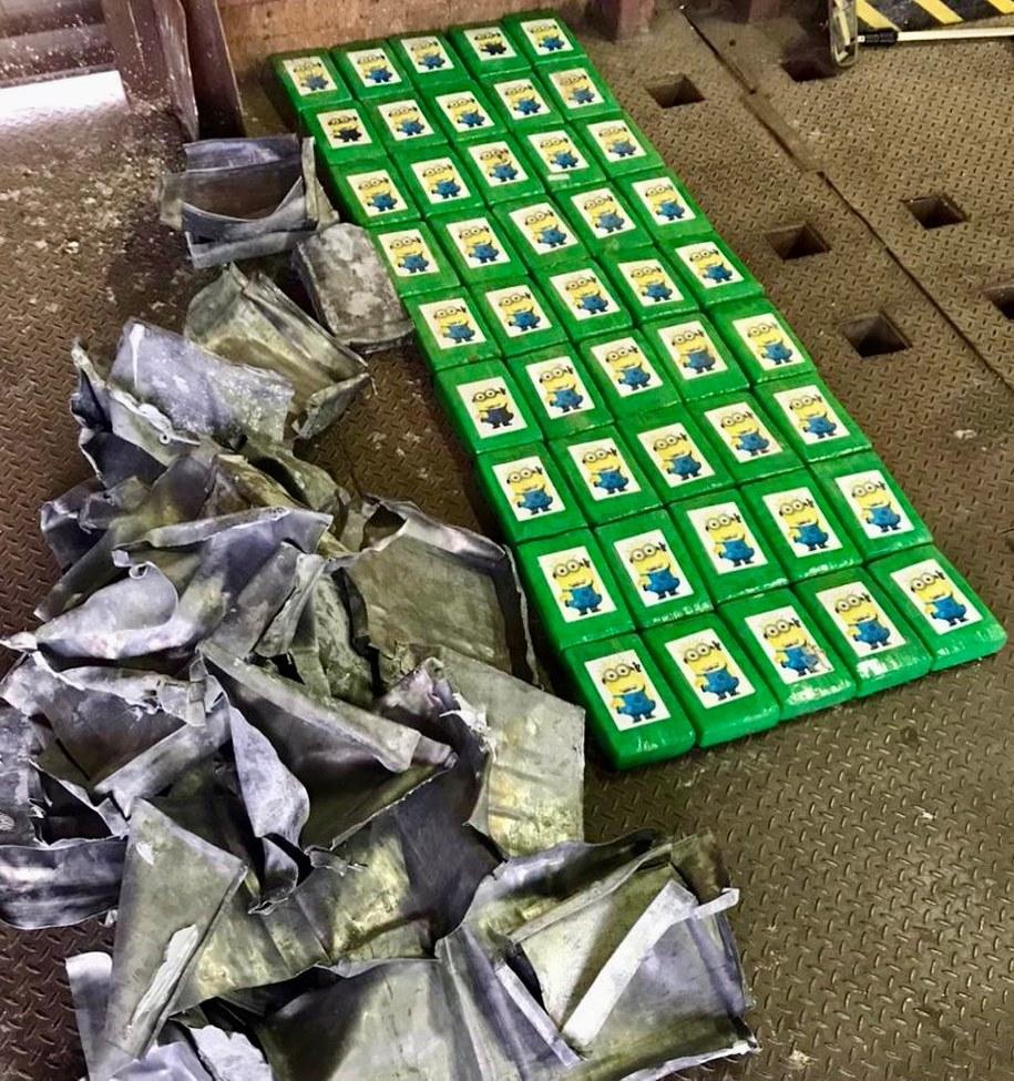 Ponad 50 kilogramów kokainy przejęli ukraińscy pogranicznicy w jednym z portów w Odessie /dpsu.gov.ua /