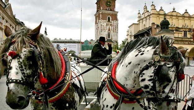 Ponad 8 mln gościł w ubiegłym roku Kraków /AFP