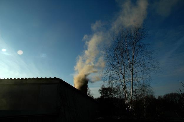 Ponad połowa unoszących się w powietrzu pyłów pochodzi z gospodarstw domowych /fot. Bogdan Sarwiński /East News