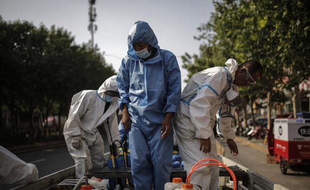 Ponad tysiąc zgonów w Hiszpanii. Szef WHO ostrzega przed nową fazą epidemii [RELACJA 19.06.2020]
