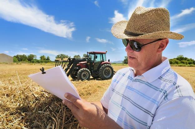 Poprawia się sytuacja materialna rolników /©123RF/PICSEL
