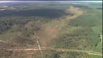 Poprzewracane drzewa i zniszczone domy