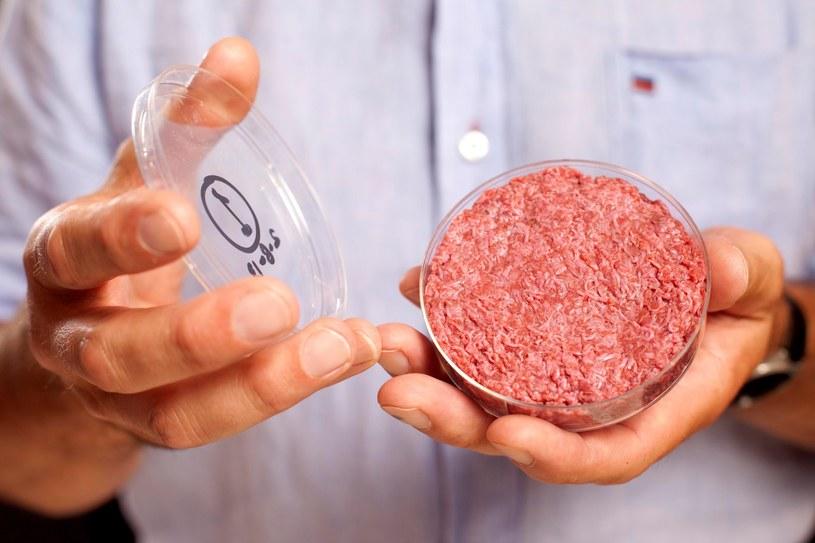 Popularność zamienników mięsa będzie rosnąć w Polsce /AFP