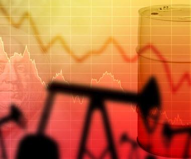 Popyt na ropę do 2050 r. może spaść nawet o 70 proc.