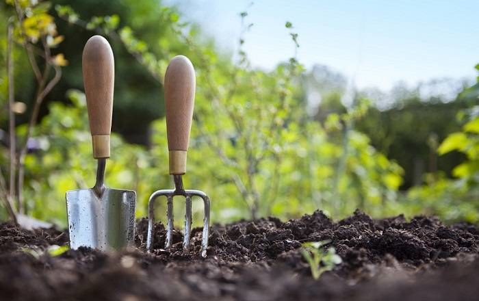 porady ogrodnicze /© Photogenica