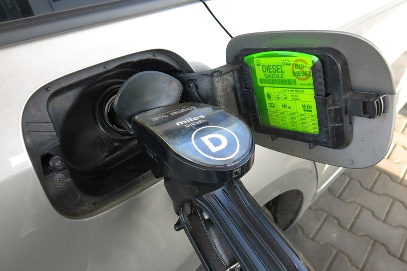Poroblemy z uruchomieniem auta zimą może powodować paliwo słabej jakości /Adrian Ślazok /Reporter