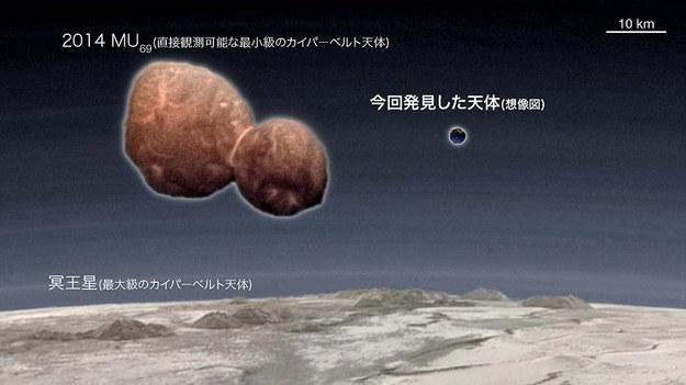 Porównanie odkrytego obiektu z planetoidą Ultima Thule /NASA/Johns Hopkins University Applied Physics Laboratory/Southwest Research Institute/Ian Regan/Ko Arimatsu /Materiały prasowe
