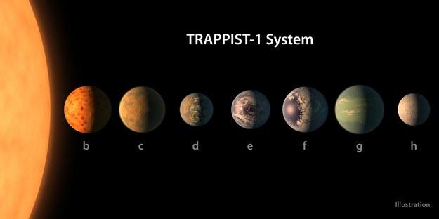 Porównanie prawdopodobnych rozmiarów siedmiu planet układu TRAPPIST-1 /NASA/R. Hurt/T. Pyle /Materiały prasowe