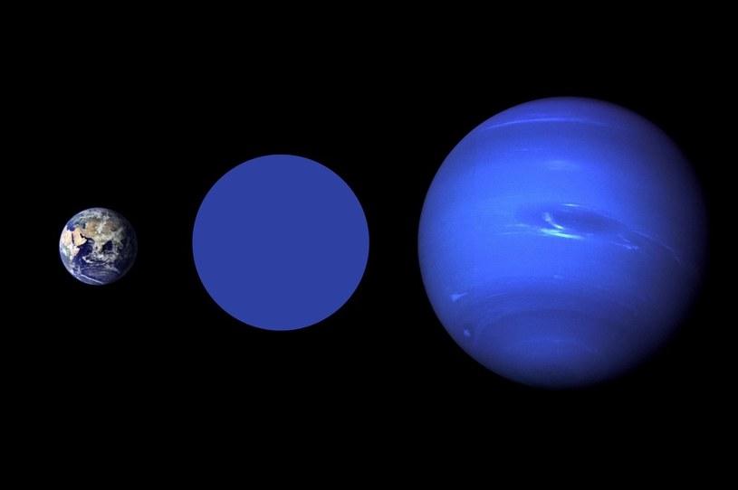 Porównanie rozmiarów Ziemi, planety Wolf 503b i Neptuna /materiały prasowe
