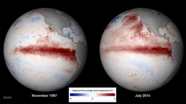 Porównanie zasięgu zjawiska El Nino w 1997 i 2015 roku /materiały prasowe