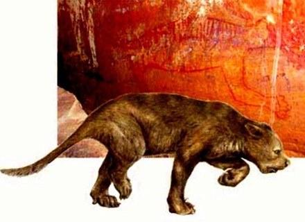 Portret lwa workowatego wykonany przez aborygenów i sporządzona przez naukowców rekonstrukcja /MWMedia
