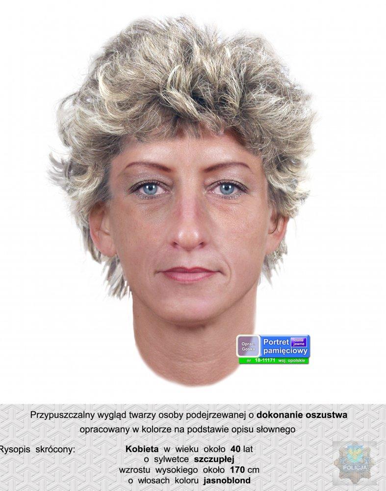Portret pamięciowy poszukiwanej kobiety /Policja Opolska /