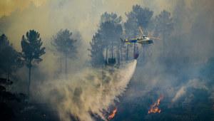 Portugalia: Ugaszono dwa pożary, w których obrażenia odniosło ponad 50 osób