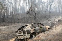 Portugalia wciąż walczy z pożarami lasów. Rośnie liczba ofiar