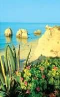 Portugalia, wybrzeże Algarve /Encyklopedia Internautica
