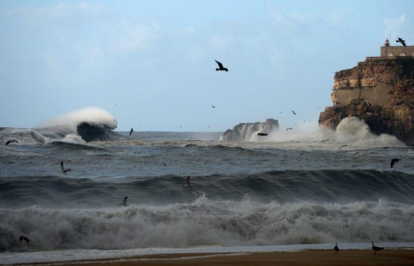 Portugalia /AFP