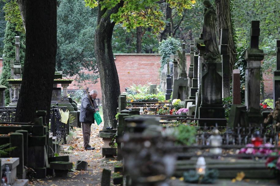 Porządki na Cmentarzu Powązkowskim w Warszawie / Tomasz Gzell    /PAP