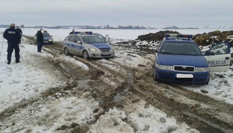 Pościg zakończył się na polnych drogach /Policja