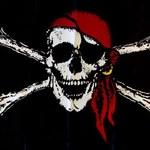 Poseł oskarżony o piractwo