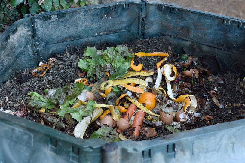 Posiadanie kompostu to łatwy sposób na ekologiczny nawóz /123RF/PICSEL