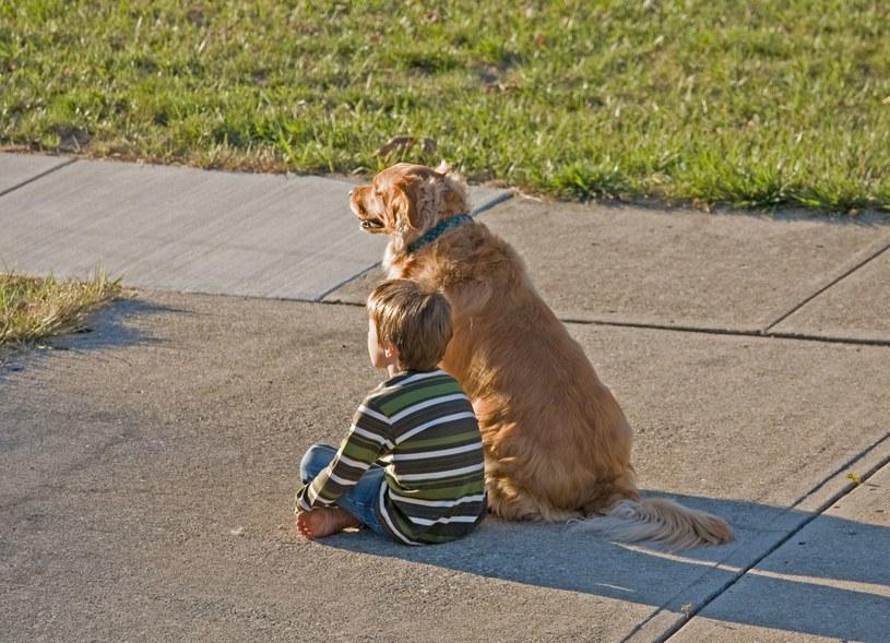 Posiadanie psa już w dzieciństwie procentuje w przyszłości /123RF/PICSEL